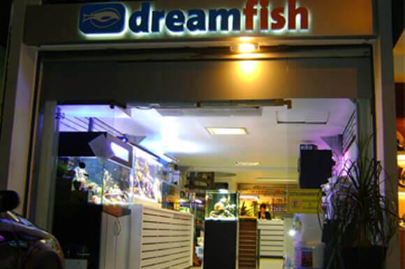 dream-fish