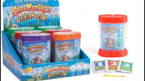 Você já ouviu falar de Sea-Monkeys? Conheça 16 curiosidades sobre eles!
