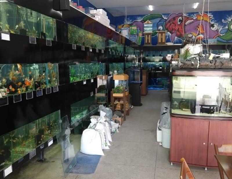 aqua-quality-loja-interno