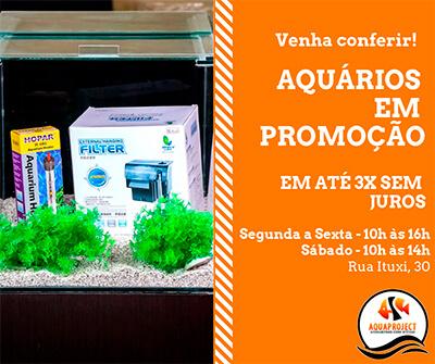promoção de aquários aquaproject